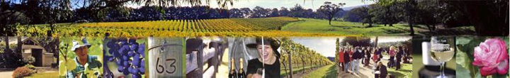 Welcome to Elgee Park Wines in Mornington Peninsula, Victoria